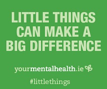 Little Things Campaign 2014